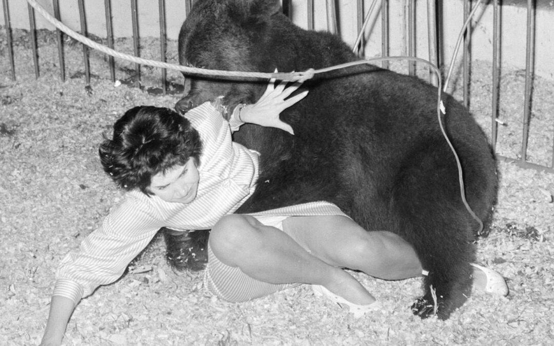 Aflevering 1: Het meisje en de beer